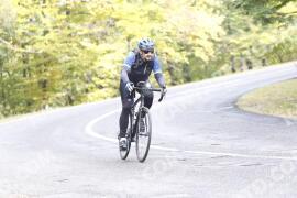 Photo #1347460 | 23-10-2020 12:10 | Road towards Dobogókő - Curve Freedom