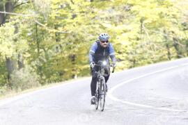 Photo #1347459 | 23-10-2020 12:10 | Road towards Dobogókő - Curve Freedom