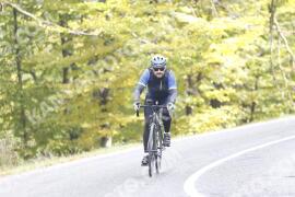 Photo #1347457 | 23-10-2020 12:10 | Road towards Dobogókő - Curve Freedom