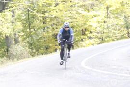 Photo #1347458 | 23-10-2020 12:10 | Road towards Dobogókő - Curve Freedom