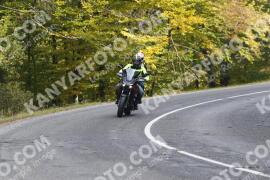 Photo #1347462 | 23-10-2020 12:10 | Road towards Dobogókő - Curve Freedom