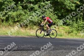 Photo #1165524   16-08-2020 10:06   Pilis - Road to Dobogókő