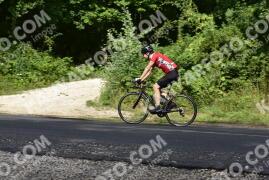 Photo #1163065   16-08-2020 10:06   Pilis - Road to Dobogókő